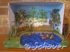 Thinking INSIDE the box–A duck habitat diorama.