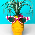 Air Plant Holder: Pineapple Craft with Clay Pots