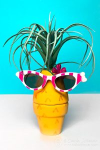 So Adorable! How to Make a Pineapple Air Plant Holder from clay pots. | Carla Schauer Designs #pineapplecraft #airplantholder #claypotcraft #pineappledecor