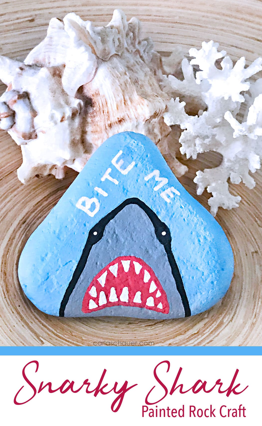 Shark Painted river stone with shells