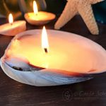 Make Candles in Seashells: DIY Shell Decor