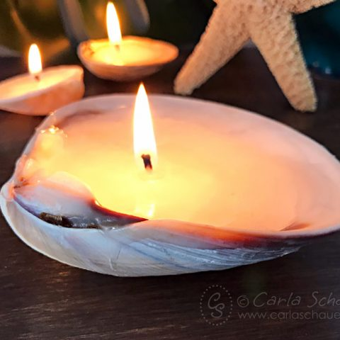 3 lit candles made from seashells.
